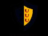 Het wapen van Kaatsheuvel