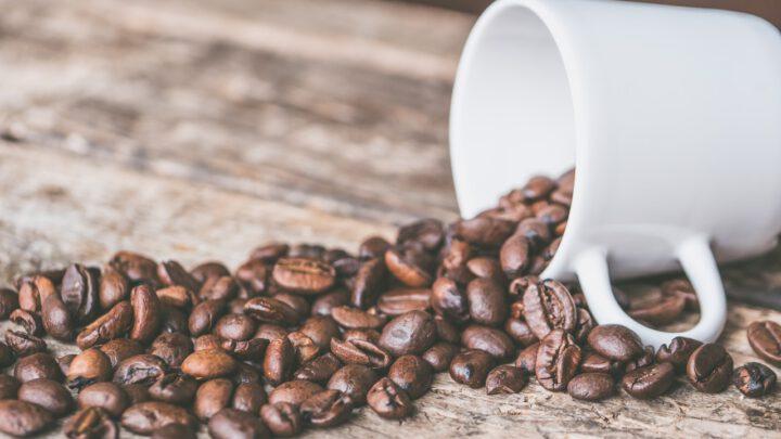Koffie Den Bosch favoriet