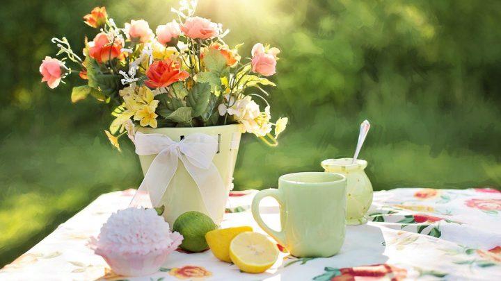 Tips voor een zomer proof tuin