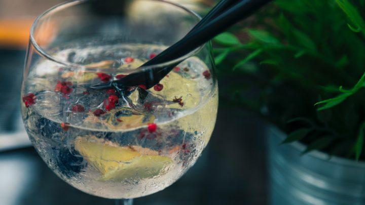 Alcoholvrije gin: ideaal alternatief voor alcoholhoudende dranken